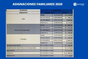 Lee más sobre el artículo ASIGNACIONES FAMILIARES  2020